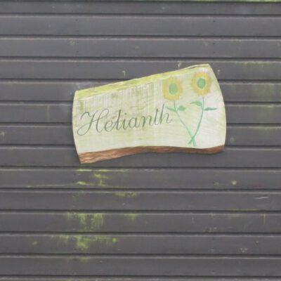 Boswinde 48 - Helianth