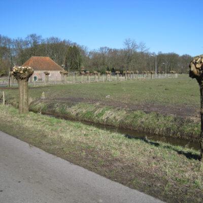 Nijenburgerweg, GM
